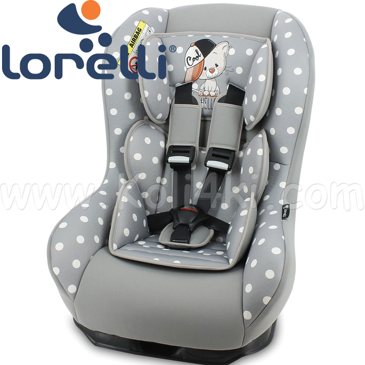 2020 Lorelli Beta Plus Стол за кола 0-18кг. Grey Cool Cat 100707